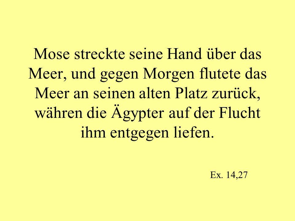 Mose streckte seine Hand über das Meer, und gegen Morgen flutete das Meer an seinen alten Platz zurück, währen die Ägypter auf der Flucht ihm entgegen liefen.