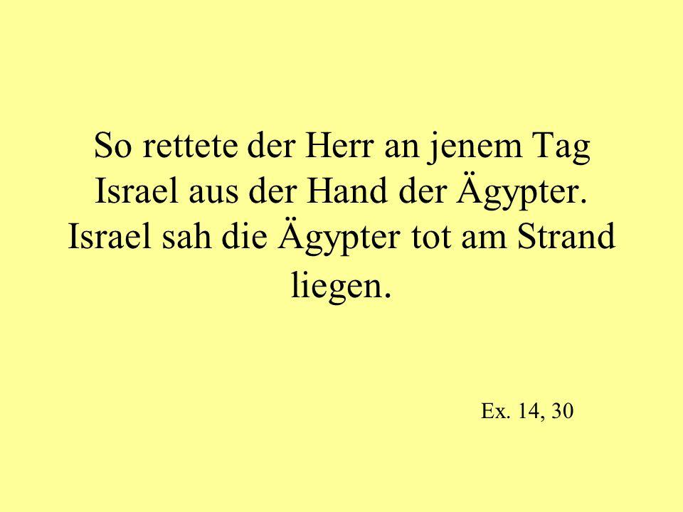 So rettete der Herr an jenem Tag Israel aus der Hand der Ägypter