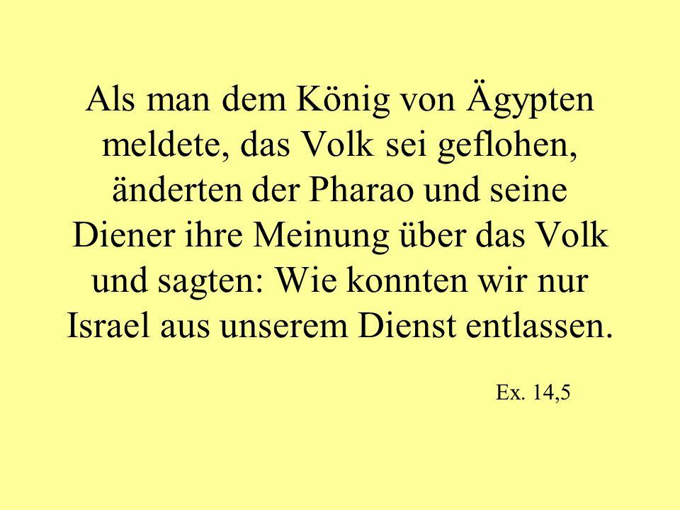 Als man dem König von Ägypten meldete, das Volk sei geflohen, änderten der Pharao und seine Diener ihre Meinung über das Volk und sagten: Wie konnten wir nur Israel aus unserem Dienst entlassen.