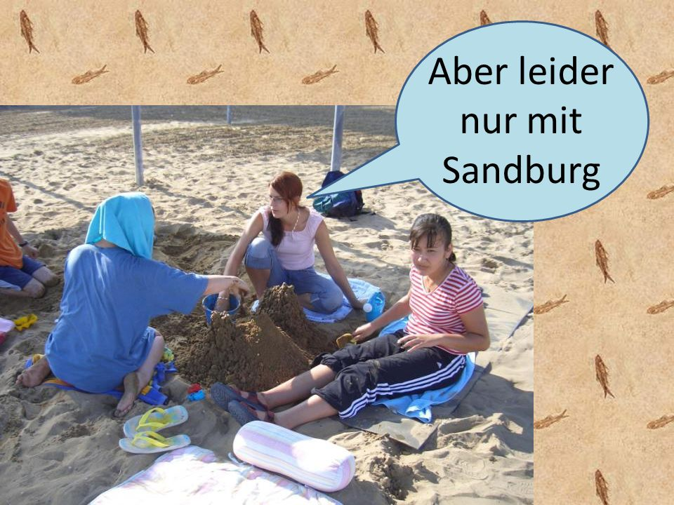 Aber leider nur mit Sandburg