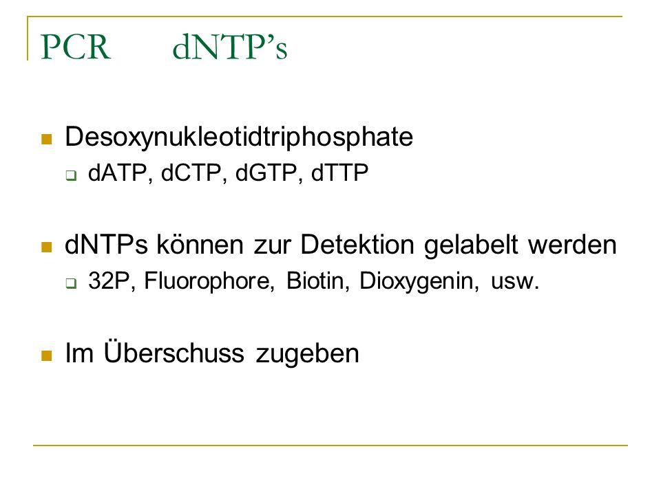 PCR dNTP's Desoxynukleotidtriphosphate
