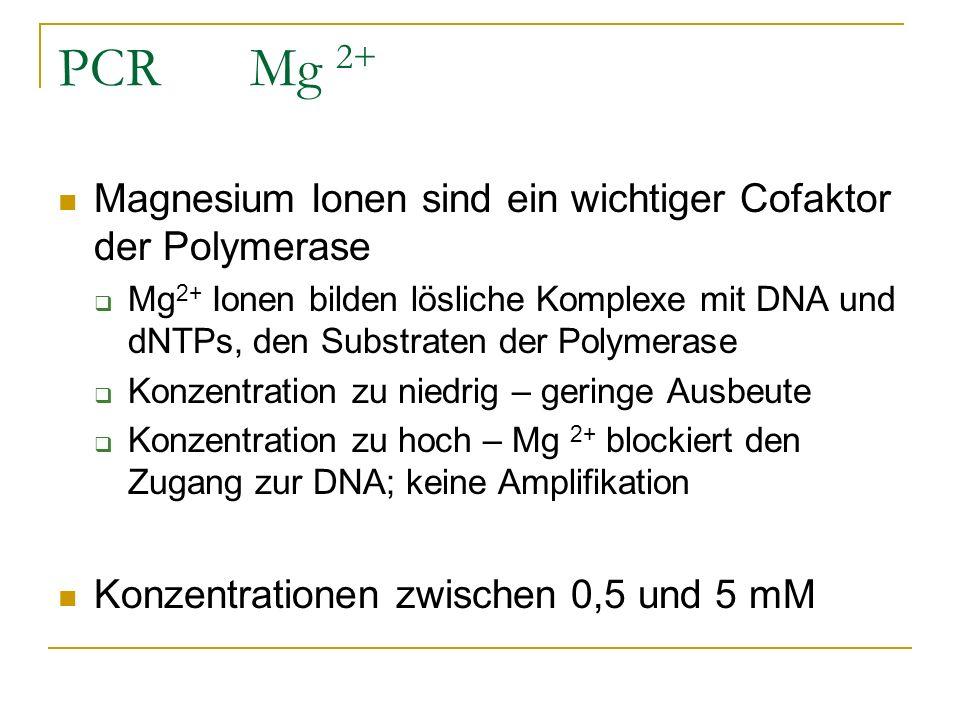 PCR Mg 2+ Magnesium Ionen sind ein wichtiger Cofaktor der Polymerase