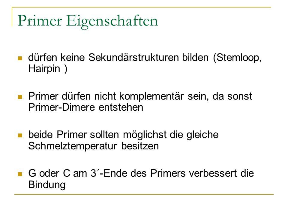 Primer Eigenschaftendürfen keine Sekundärstrukturen bilden (Stemloop, Hairpin )