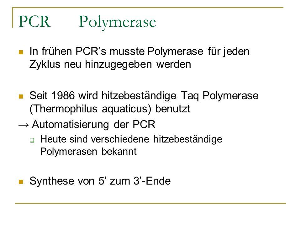 PCR Polymerase In frühen PCR's musste Polymerase für jeden Zyklus neu hinzugegeben werden.