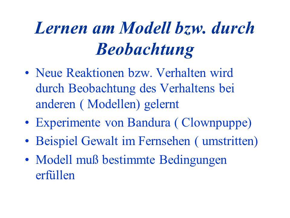 Lernen am Modell bzw. durch Beobachtung