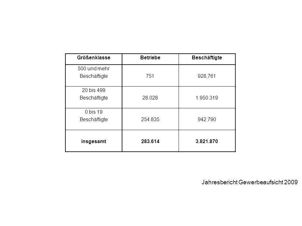 Jahresbericht Gewerbeaufsicht 2009