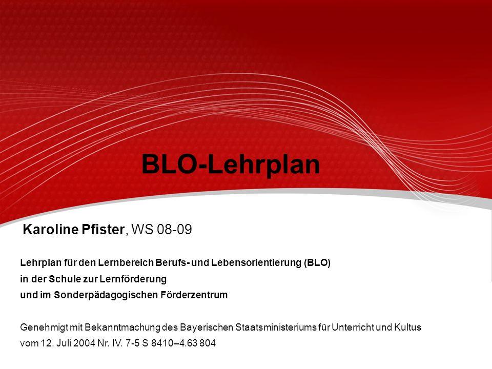 BLO-Lehrplan Karoline Pfister, WS 08-09
