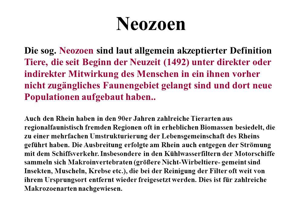 Neozoen