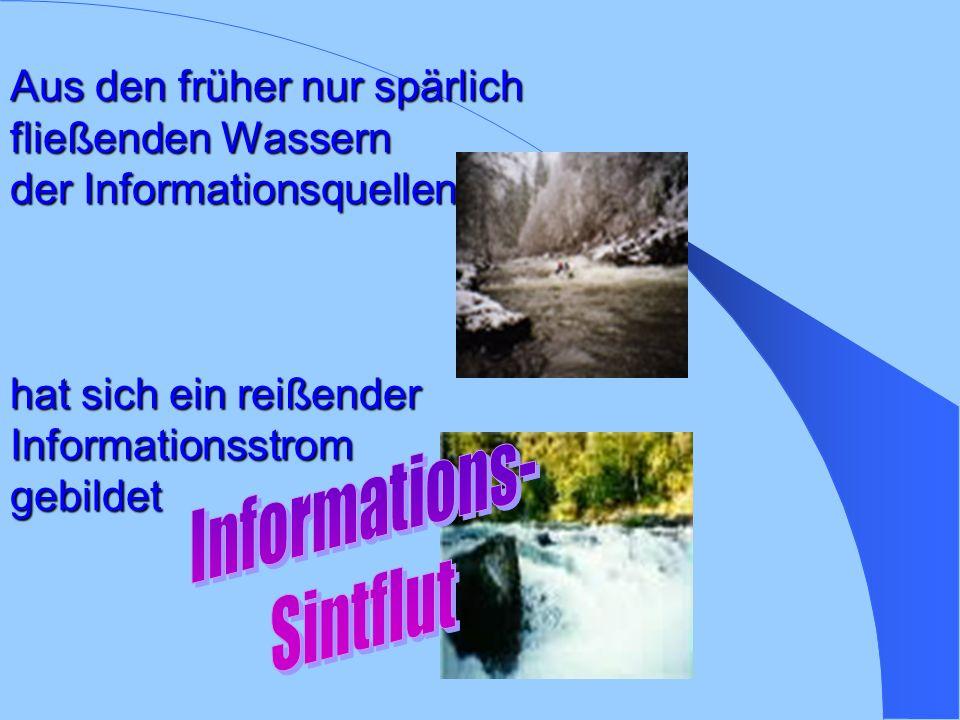 Informations- Sintflut