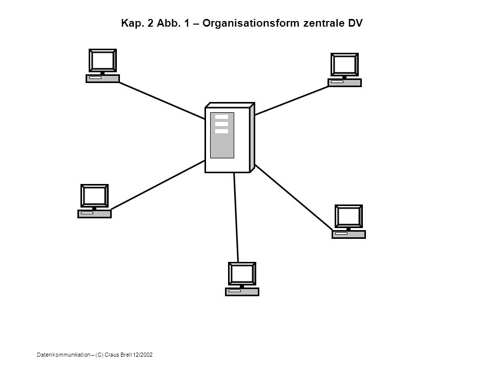 Kap. 2 Abb. 1 – Organisationsform zentrale DV