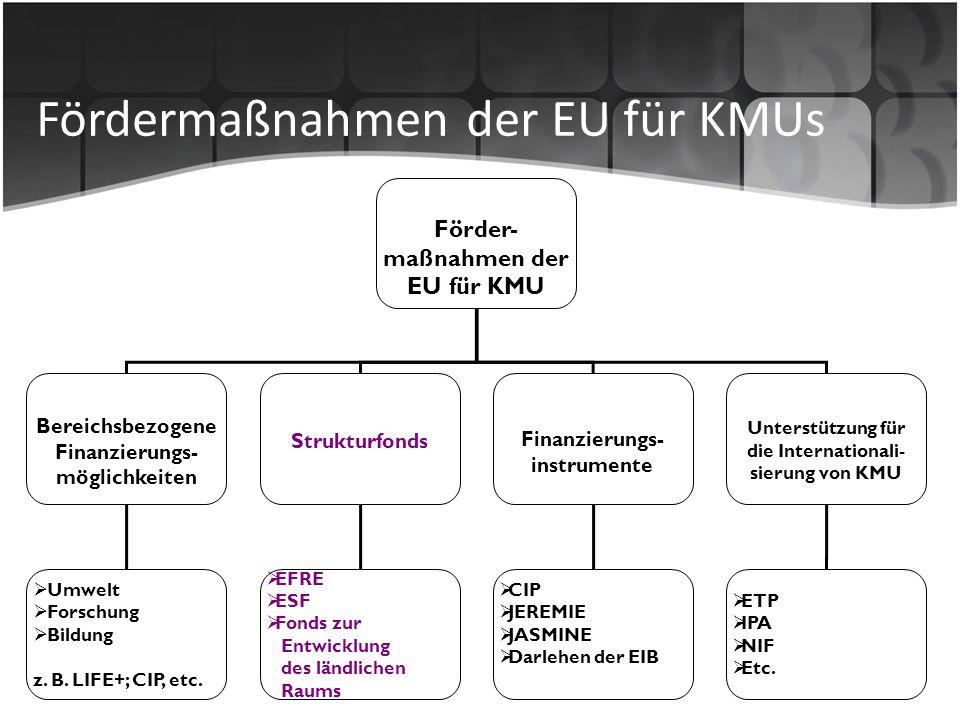 Fördermaßnahmen der EU für KMUs