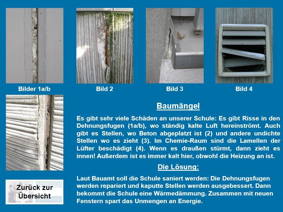 Baumängel Die Lösung: Zurück zur Übersicht Bilder 1a/b Bild 2 Bild 3