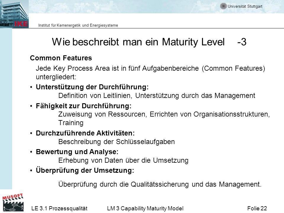 Wie beschreibt man ein Maturity Level -3