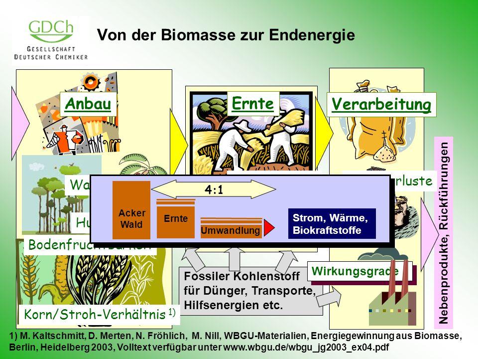Von der Biomasse zur Endenergie