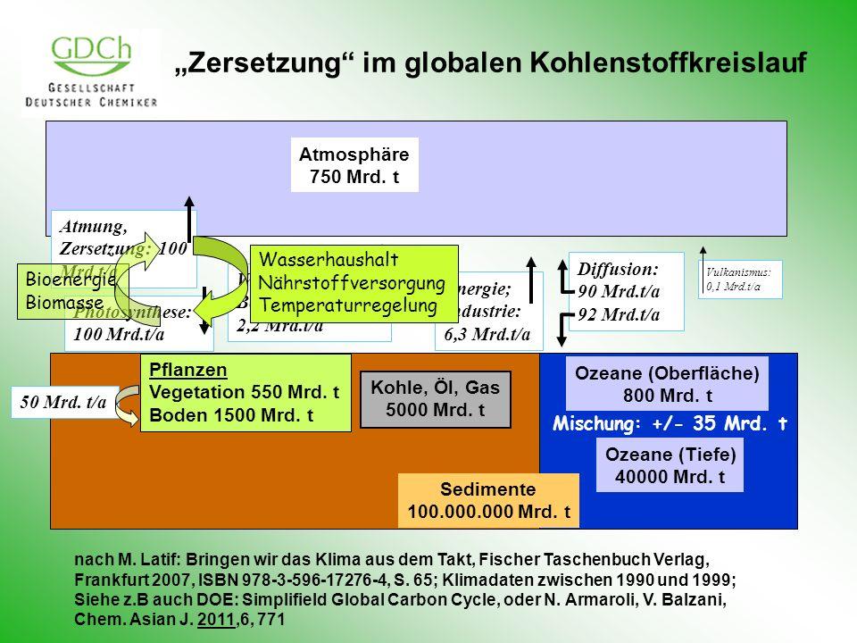 """""""Zersetzung im globalen Kohlenstoffkreislauf"""