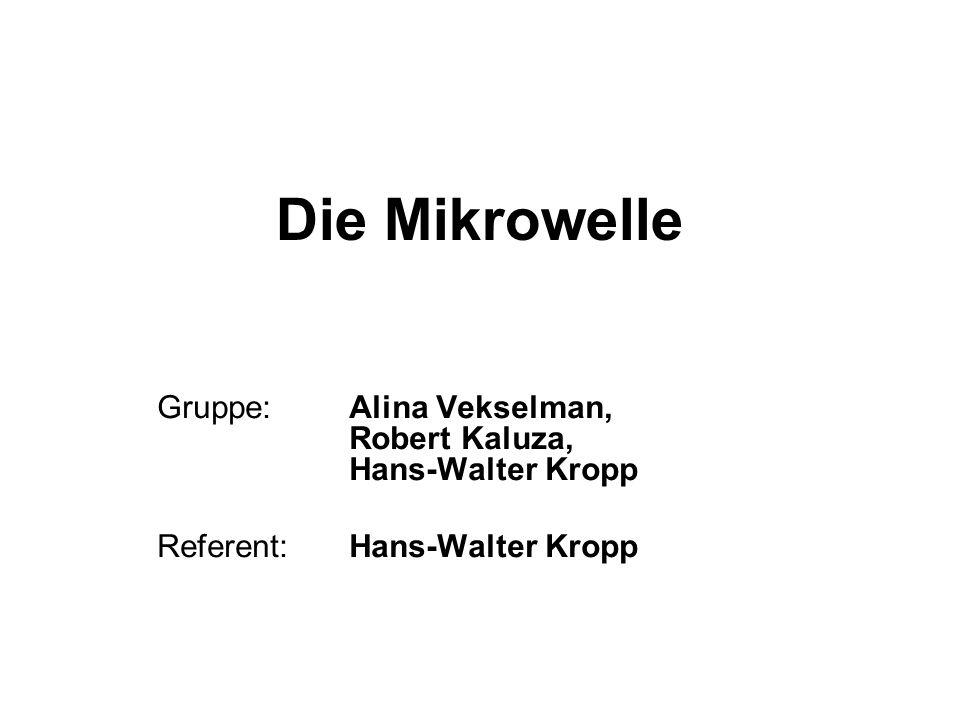 Die Mikrowelle Gruppe: Alina Vekselman, Robert Kaluza, Hans-Walter Kropp.