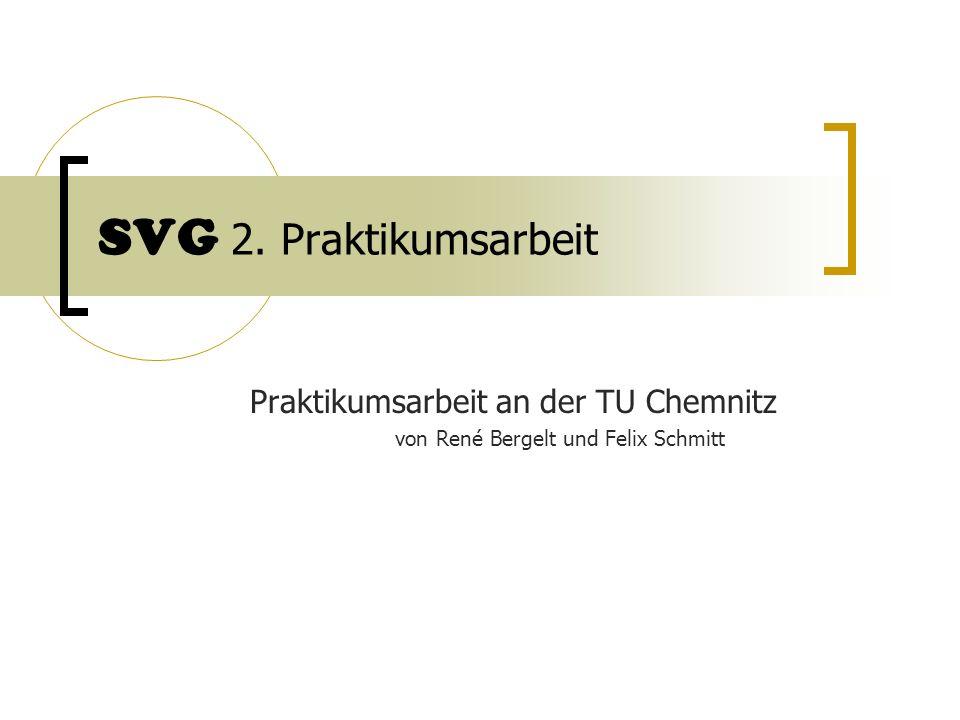 Praktikumsarbeit an der TU Chemnitz von René Bergelt und Felix Schmitt