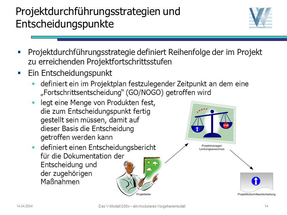Projektdurchführungsstrategien und Entscheidungspunkte