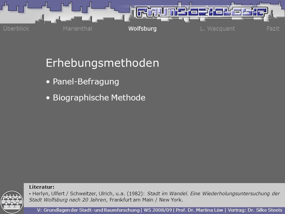 Erhebungsmethoden Panel-Befragung Biographische Methode Überblick