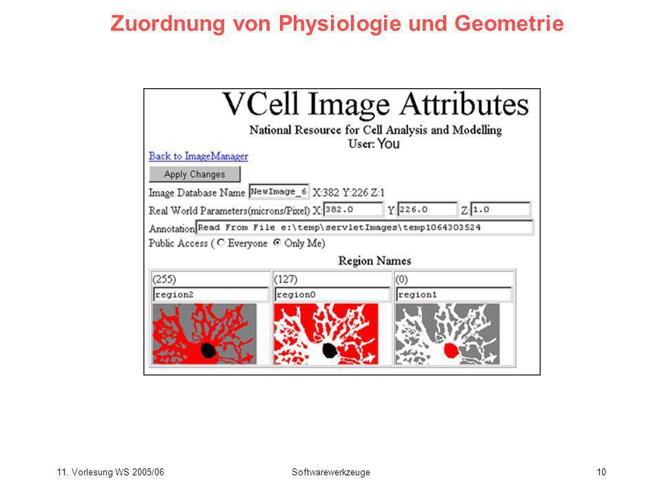 Zuordnung von Physiologie und Geometrie