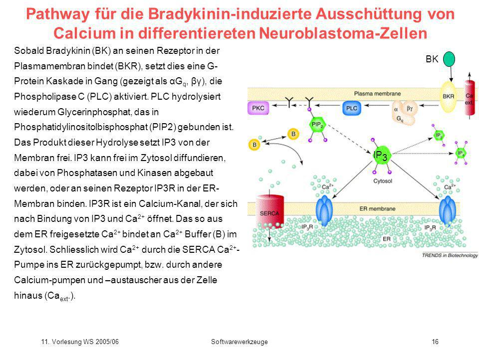 Pathway für die Bradykinin-induzierte Ausschüttung von Calcium in differentiereten Neuroblastoma-Zellen