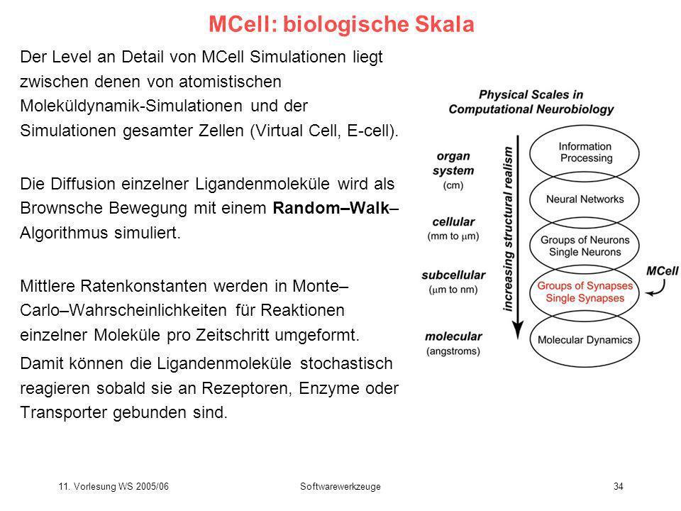 MCell: biologische Skala