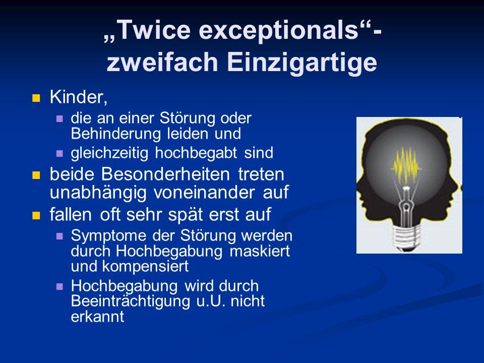 """""""Twice exceptionals - zweifach Einzigartige"""