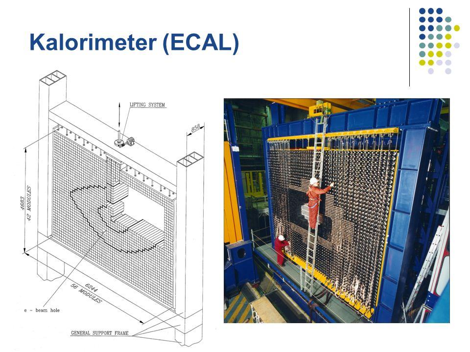 Kalorimeter (ECAL)