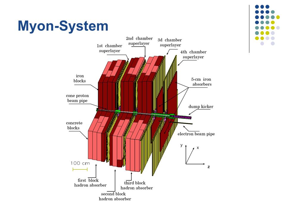 Myon-System