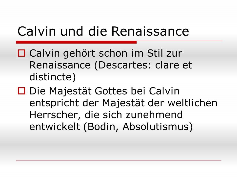 Calvin und die Renaissance