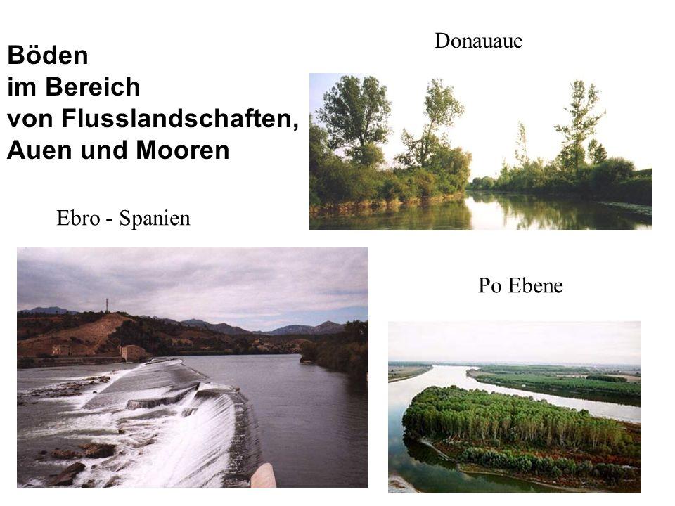 Böden im Bereich von Flusslandschaften,
