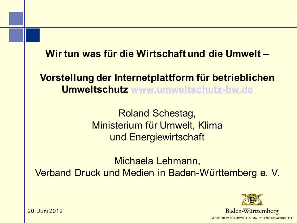 Roland Schestag, Ministerium für Umwelt, Klima und Energiewirtschaft