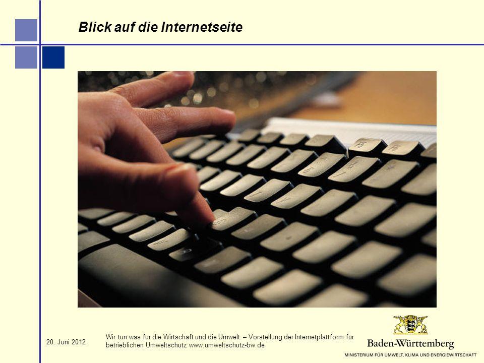 Blick auf die Internetseite