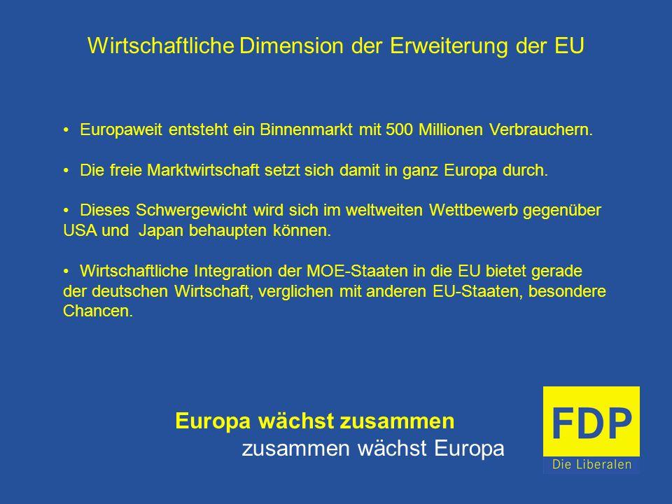 Wirtschaftliche Dimension der Erweiterung der EU