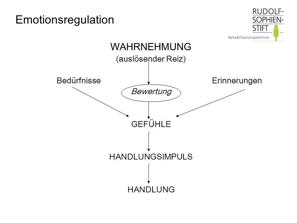 Emotionsregulation WAHRNEHMUNG (auslösender Reiz)