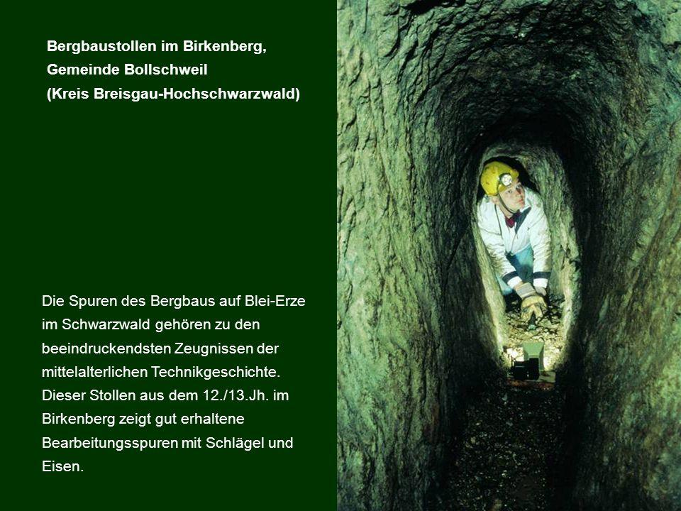 Bergbaustollen im Birkenberg, Gemeinde Bollschweil