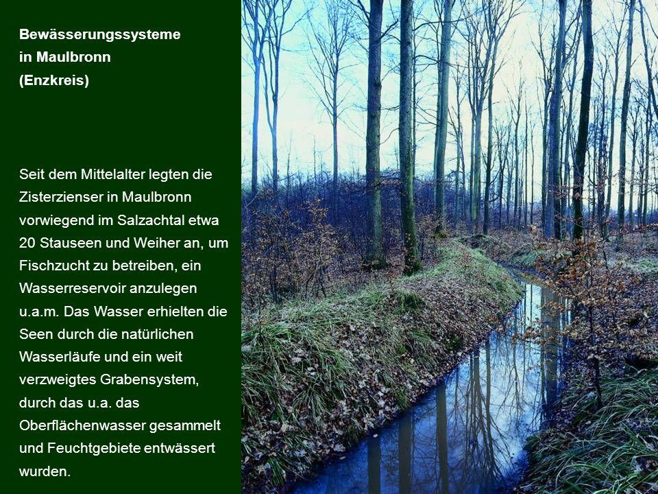 Bewässerungssysteme in Maulbronn. (Enzkreis)