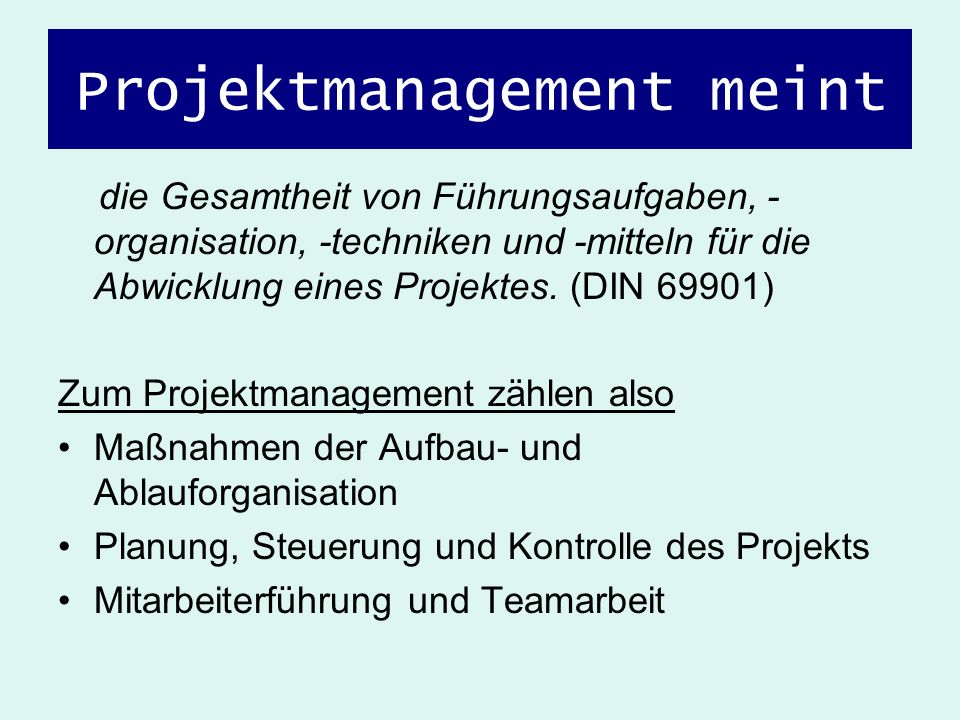 Projektmanagement meint