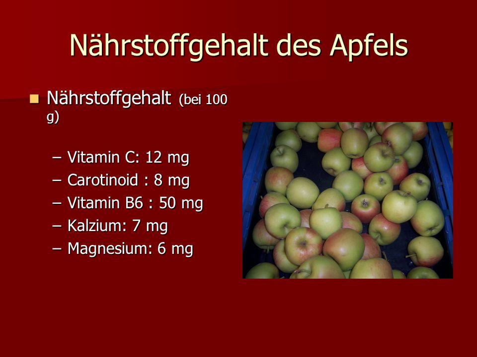 Nährstoffgehalt des Apfels