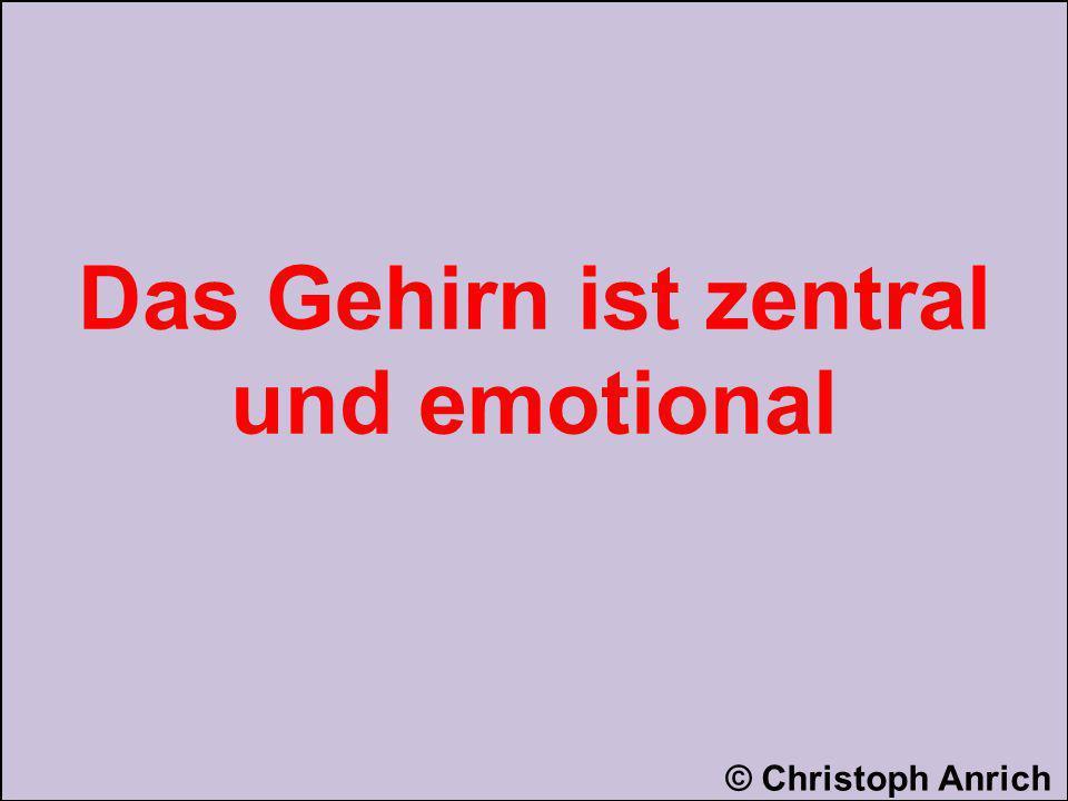 Das Gehirn ist zentral und emotional
