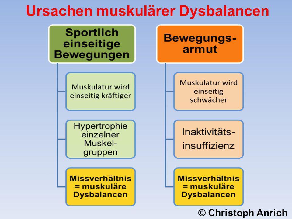 Ursachen muskulärer Dysbalancen