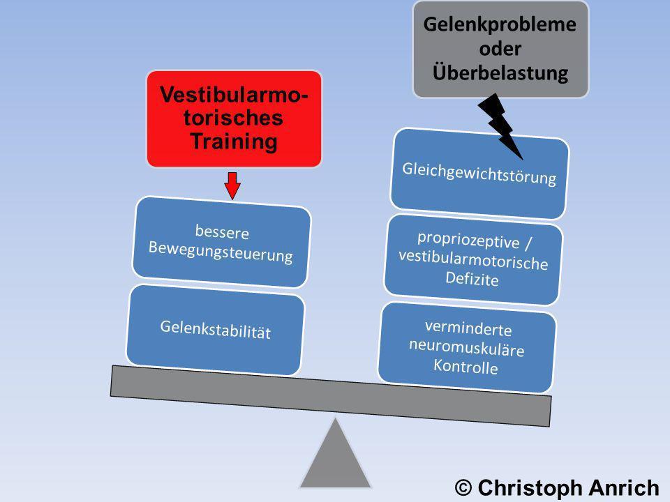 Vestibularmo-torisches Training Gelenkprobleme oder Überbelastung