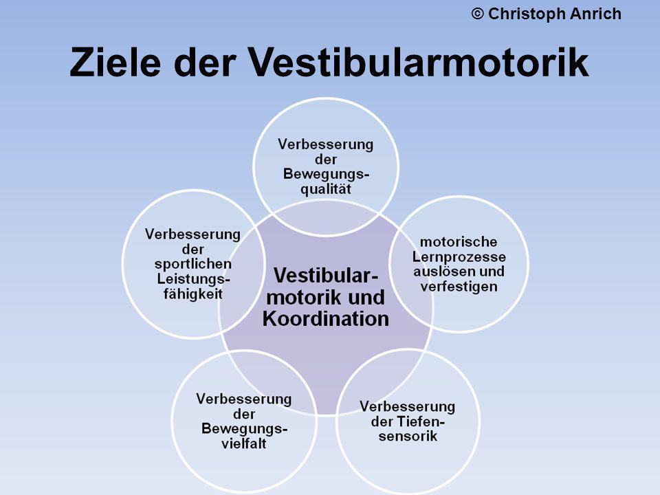Ziele der Vestibularmotorik