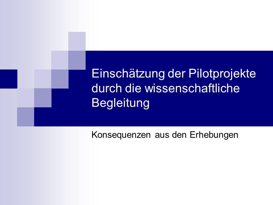 Einschätzung der Pilotprojekte durch die wissenschaftliche Begleitung
