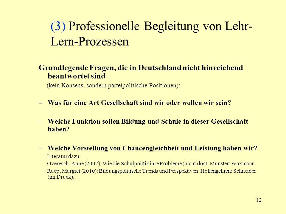 (3) Professionelle Begleitung von Lehr-Lern-Prozessen