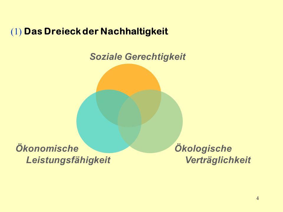 (1) Das Dreieck der Nachhaltigkeit