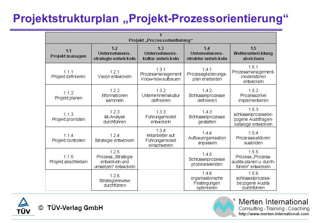 """Projektstrukturplan """"Projekt-Prozessorientierung"""