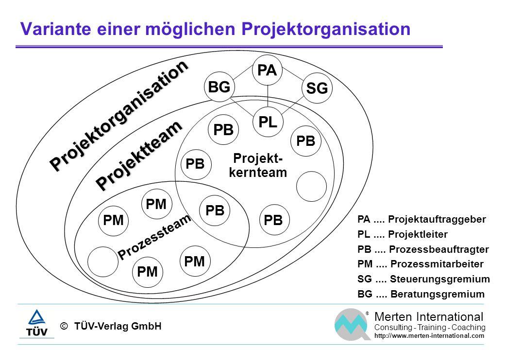 Variante einer möglichen Projektorganisation