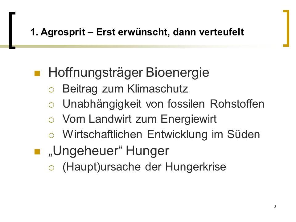 Hoffnungsträger Bioenergie