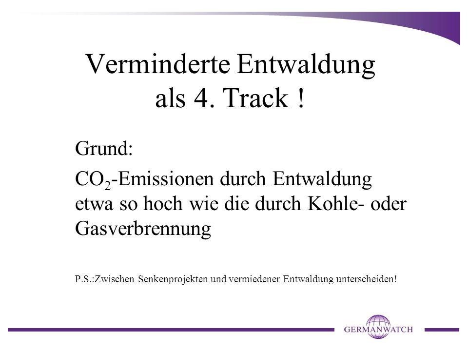 Verminderte Entwaldung als 4. Track !